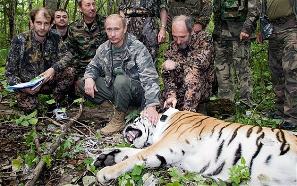 The only man who could look bored while Vulcan mind-melding with a tiger